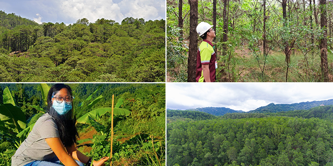 Large-Scale Metallic Miners Take Lead in Ph's Reforestation Efforts